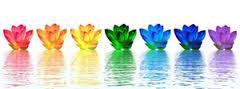 Fleurs de cristal arc en ciel
